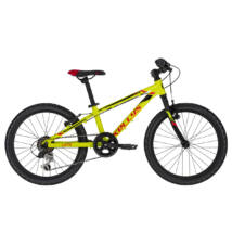 "Kelly's Lumi 30 neon yellow (20"") 2020"