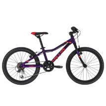 "Kelly's Lumi 30 purple (20"") 2020"