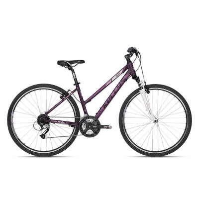 Kelly's Clea 70 violet 2018